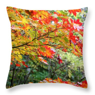 Throw Pillow featuring the photograph Arboretum Autumn Leaves by Peter Simmons