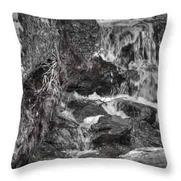Arboretum Waterfall Bw Throw Pillow