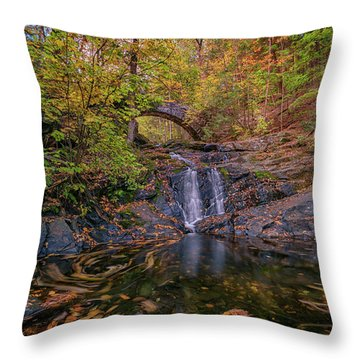Throw Pillow featuring the photograph Arch Bridge In Vaughan Woods by Rick Berk