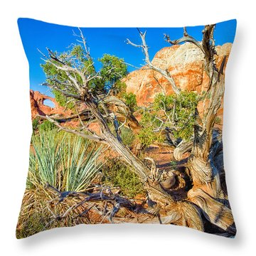 Throw Pillow featuring the photograph Arch by Daniel George