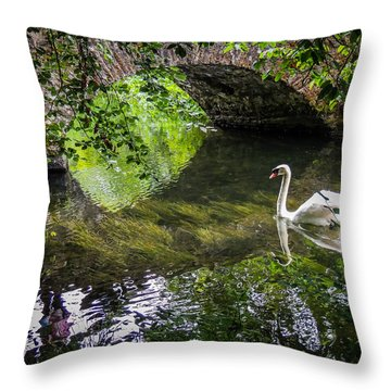 Arched Bridge And Swan At Doneraile Park Throw Pillow