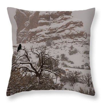 Arches In Winter Throw Pillow