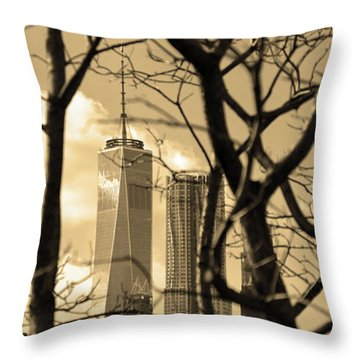 Throw Pillow featuring the photograph Architectural by Mitch Cat