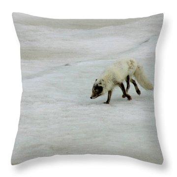 Arctic Fox On Ice Throw Pillow by Anthony Jones