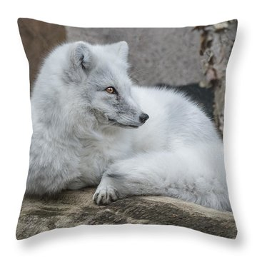 Arctic Fox Profile Throw Pillow