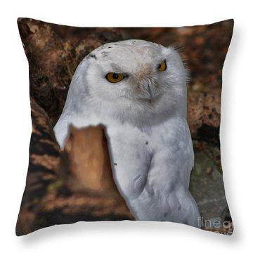 Arctic Snow Owl Throw Pillow