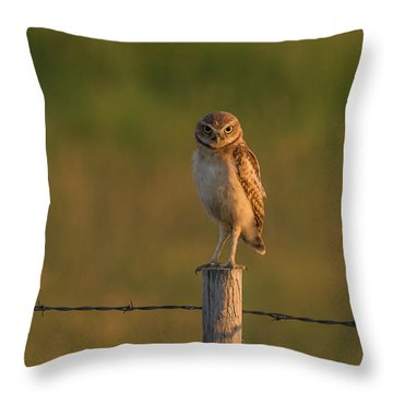 Are You Listening To Me Throw Pillow