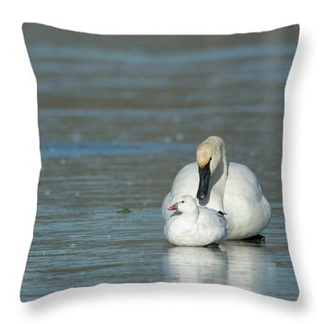Are You My Mommy? Throw Pillow
