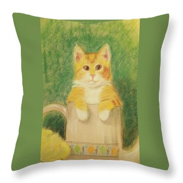 Throw Pillow featuring the drawing Are You Sure It's Ok To Be In Here? by Denise Fulmer