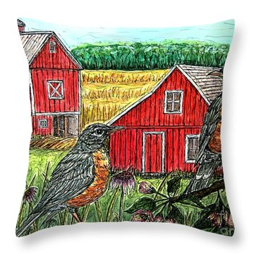Are You Sure This Is The Way To St.paul? Throw Pillow