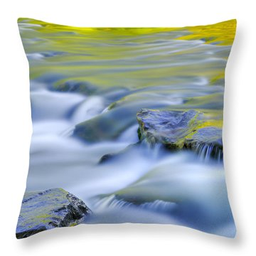 Argen River Throw Pillow