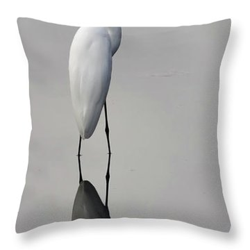 Argent Mirror #2 Throw Pillow