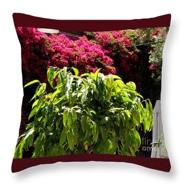 Argonaut Courtyard Throw Pillow
