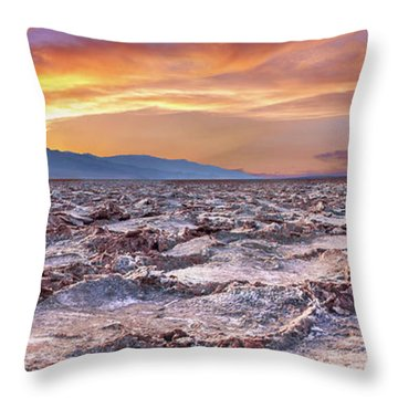 Arid Delight Throw Pillow