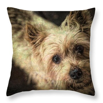 Arigato Throw Pillow by Lynn Sprowl