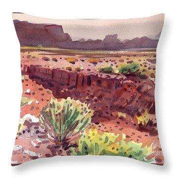 Arizona Arroyo Throw Pillow by Donald Maier