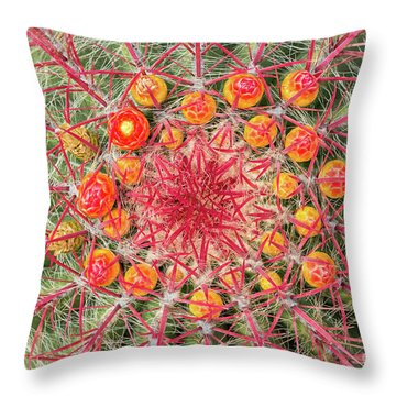 Arizona Barrel Cactus Throw Pillow by Delphimages Photo Creations