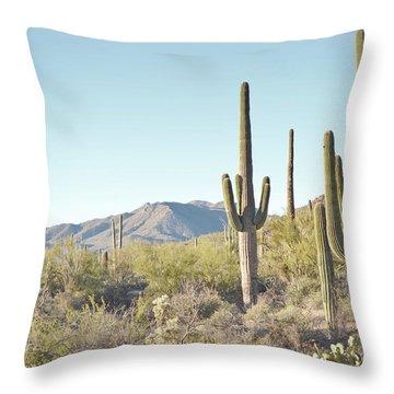 Arizona Cactus Blue Sky Landscape Throw Pillow by Andrea Hazel Ihlefeld