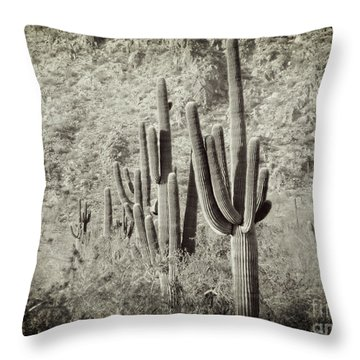 Arizona Desert 2 Throw Pillow by Methune Hively
