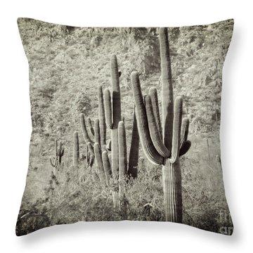 Arizona Desert 2 Throw Pillow
