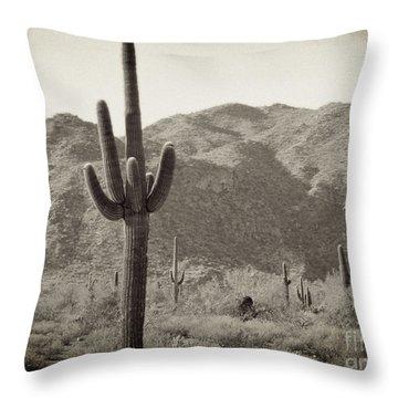 Arizona Desert Throw Pillow by Methune Hively
