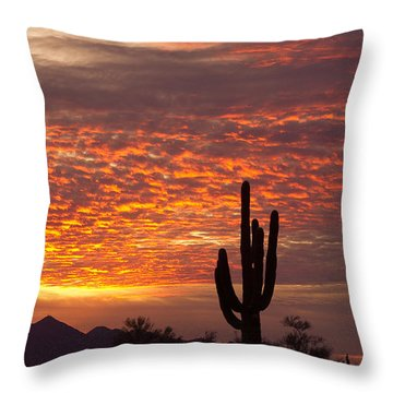 Arizona November Sunrise With Saguaro   Throw Pillow