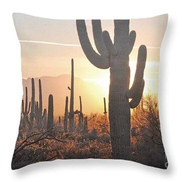 Arizona Saguaro Cactus Sunset Desert Landscape Throw Pillow by Andrea Hazel Ihlefeld