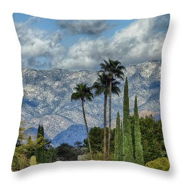 Arizona Snow Throw Pillow