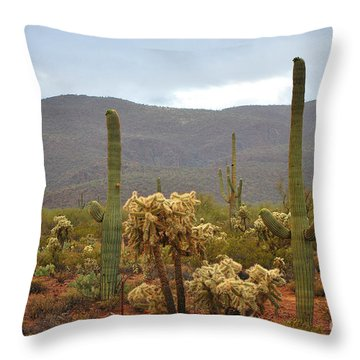 Arizona's Sonoran Desert  Throw Pillow by Donna Greene