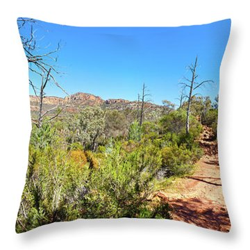 Arkaroo Rock Hiking Trail.wilpena Pound Throw Pillow by Bill Robinson