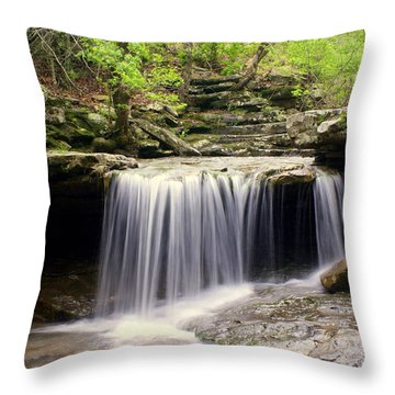 Arkansas Beauty Throw Pillow by Marty Koch