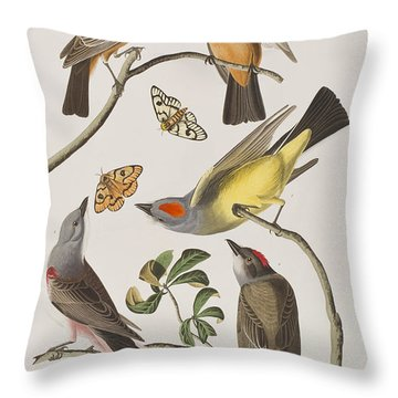 Arkansaw Flycatcher Swallow-tailed Flycatcher Says Flycatcher Throw Pillow by John James Audubon