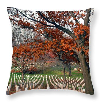 Arlington Cemetery In Fall Throw Pillow by Carolyn Marshall