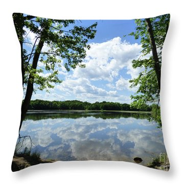 Arlington Reservoir Throw Pillow