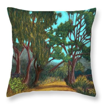 Around The Bend 02 Throw Pillow