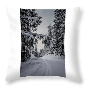 Around The Bend Throw Pillow by Albert Seger