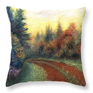 Around The Bend 01 Throw Pillow