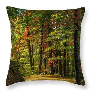 Around The Curve Throw Pillow