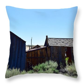 Arrested Decay Throw Pillow