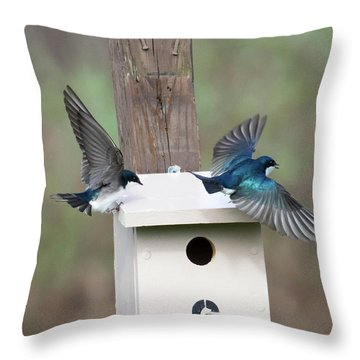 Throw Pillow featuring the photograph Arrival And Departure by Gary Wightman