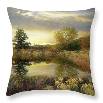 Arrival Of Dawn Throw Pillow