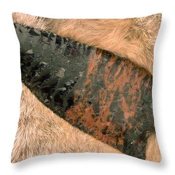 Arrow Point Throw Pillow