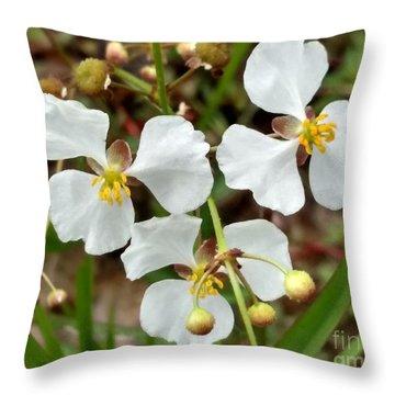 Arrowhead 3 Throw Pillow