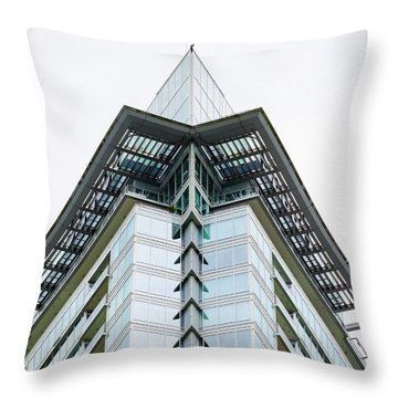 Throw Pillow featuring the photograph Arrowhead Architecture by Chris Dutton