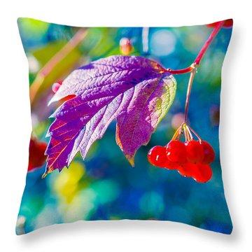 Throw Pillow featuring the photograph Arrowwood Beauty by Alexander Senin