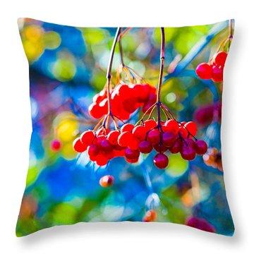 Throw Pillow featuring the photograph Arrowwood Berries Abstract by Alexander Senin