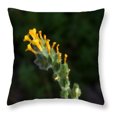 Art Dabs Of Desert Life Throw Pillow