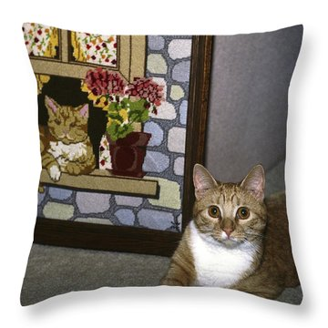 Art Imitates Life Throw Pillow by Sally Weigand