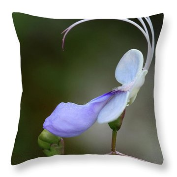 Art In Nature Throw Pillow by Sabrina L Ryan
