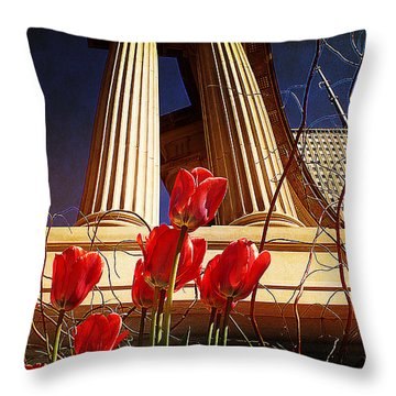 Art In The City Throw Pillow